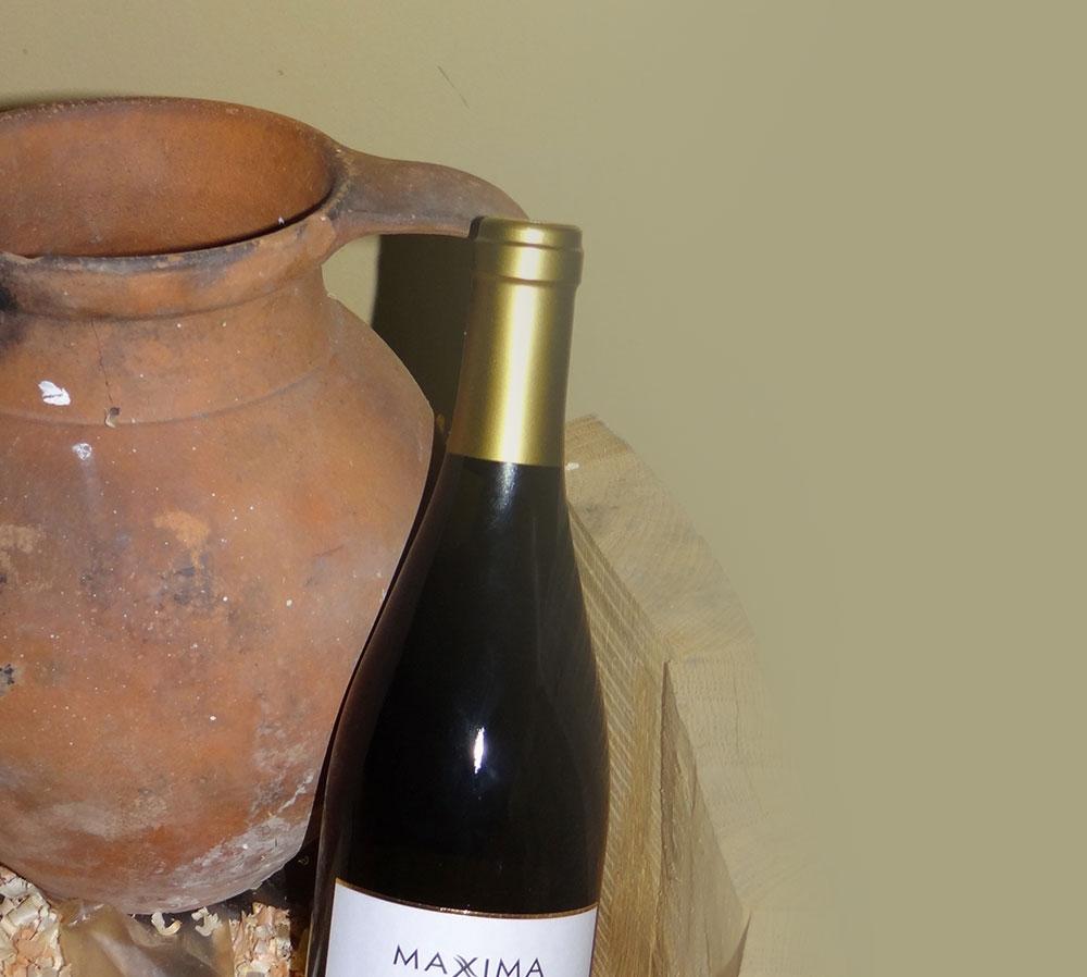 Вино-изба-Maxxima
