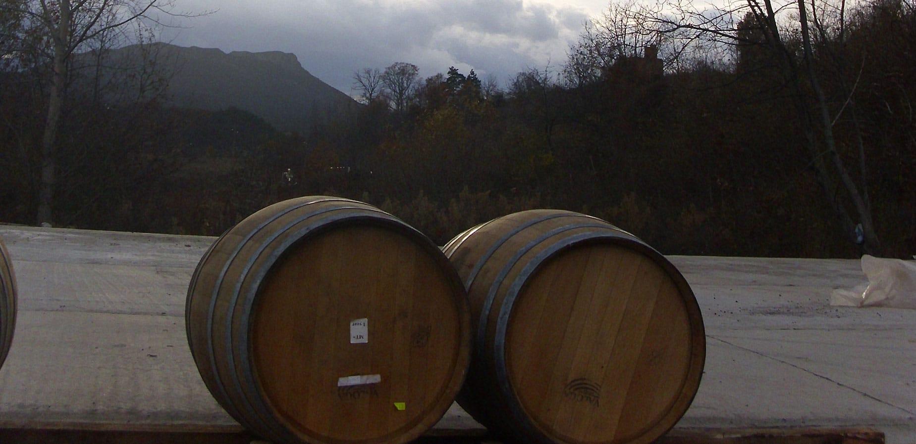 Borovitza winery